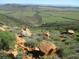 Horseshoe Range